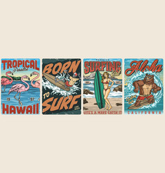 extreme surfing vintage colorful posters vector image