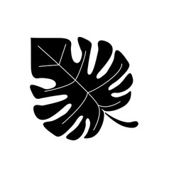 Monstera tropicalplant pictogram vector