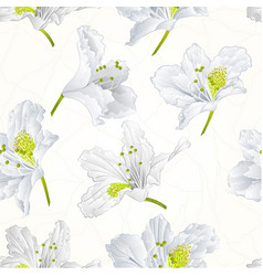 seamless texture white rhododendron cracks vintage vector image