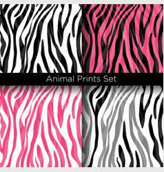 set african zebra patterns vector image