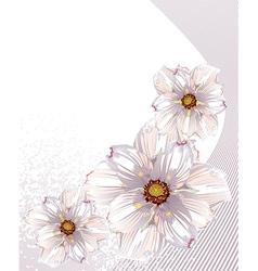 White Floral Design vector