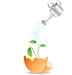 plant growing from egg vector image