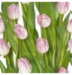 Seamless from pink tulips EPS 10 vector image vector image