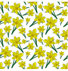 Blooming yellow daffodils with green leaves vector