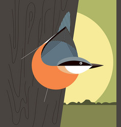 Nuthatch on the trunk of a tree vector