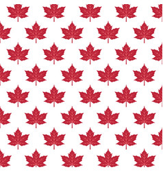 pattern with red maple leaves vector image