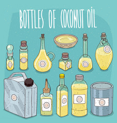 set of containers with coconut oil vector image