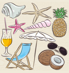 Set of summer symbols clams shells cocktail vector