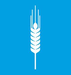 Stalk of ripe barley icon white vector