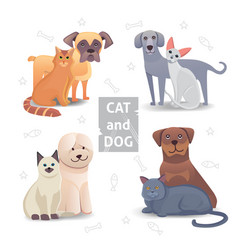 cute cat and dog cartoon home pet vector image
