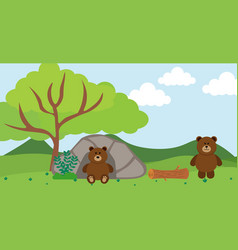 Bear cute animals in cartoon style wild animal vector