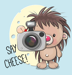 Cute cartoon hedgehog with a camera vector