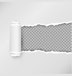 design torn paper strip torn open paper with vector image