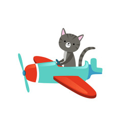 Gray kitten with cute muzzle flying on colorful vector
