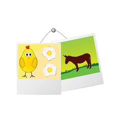 photo frame with cute donkey and the chicken vector image