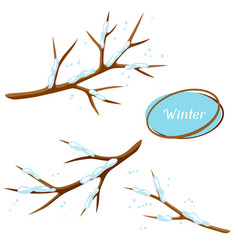 Winter set with branches of tree and snow vector