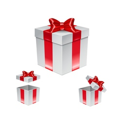 Set of gift box with red bow isolated on white vector image vector image