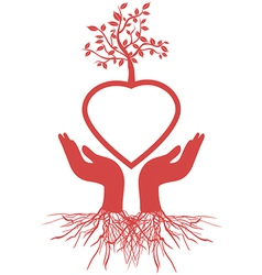 hand holds heart tree vector image