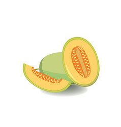 melon isolated in flat style Healthy food fruit vector image vector image