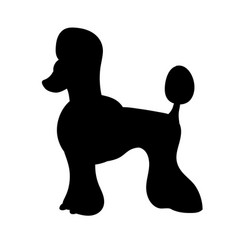 Silhouette of poodle isolated on white background vector