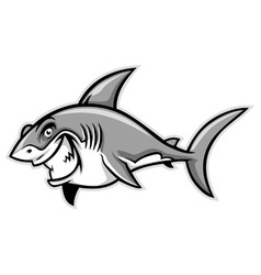 great white shark smiling vector image