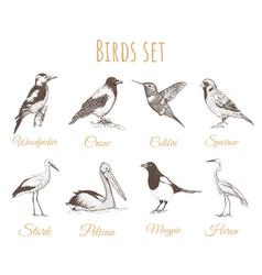Birds set sketch vector