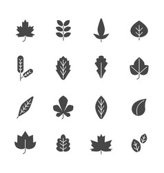 black leaves symbols autumn plants vector image