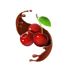 cherry in chocolate melted splash realistic vector image