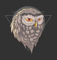 Owl bird wisdom vector