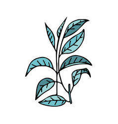 Tea branch in doodle style with stroke vector