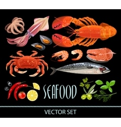 Set of seafood vector image vector image