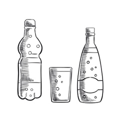 Bottles and glass of sweet soda drink vector