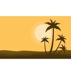 Clump palm scenery at sunset silhouettes vector