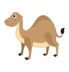 Cute brown camel vector