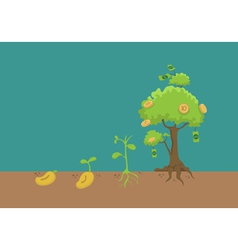 Evolution of money tree vector image