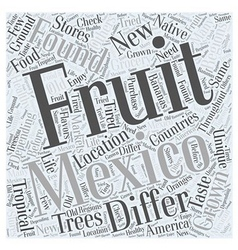 What are some Fruits in Mexico Word Cloud Concept vector