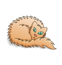 Red Fluffy Cat vector image vector image