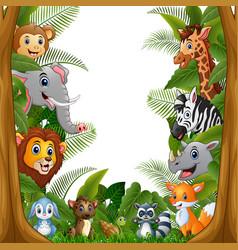 animals forest meet together in frame vector image