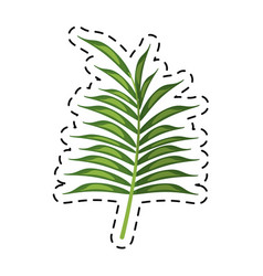 Cartoon leave palm tropical flora vector