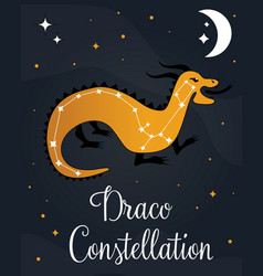 Constellation draco star in night sky vector