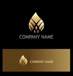 Ecology bio droplet gold company logo vector