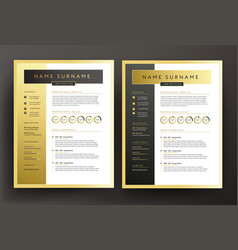 expert cv resume template in black and gold vector image