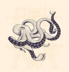 Octopus vintage vector