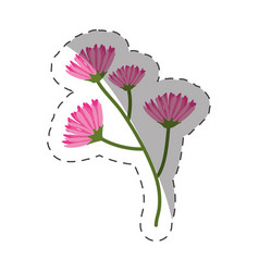 Pink branch flowers decoration cut line vector