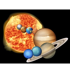 Sun and planets vector image