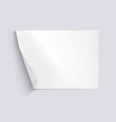 White sheet of paper on background vector