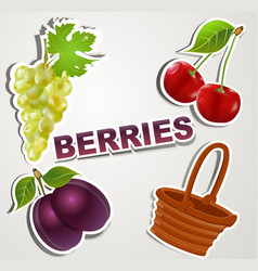 set of icons berries vector image