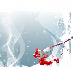 ash tree branch winter background vector image