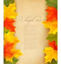 autumn background with colorful leaves and old vector image
