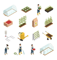Greenhouse elements isometric icons set vector